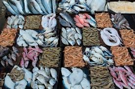 Fish displayed on a fishmarket stall